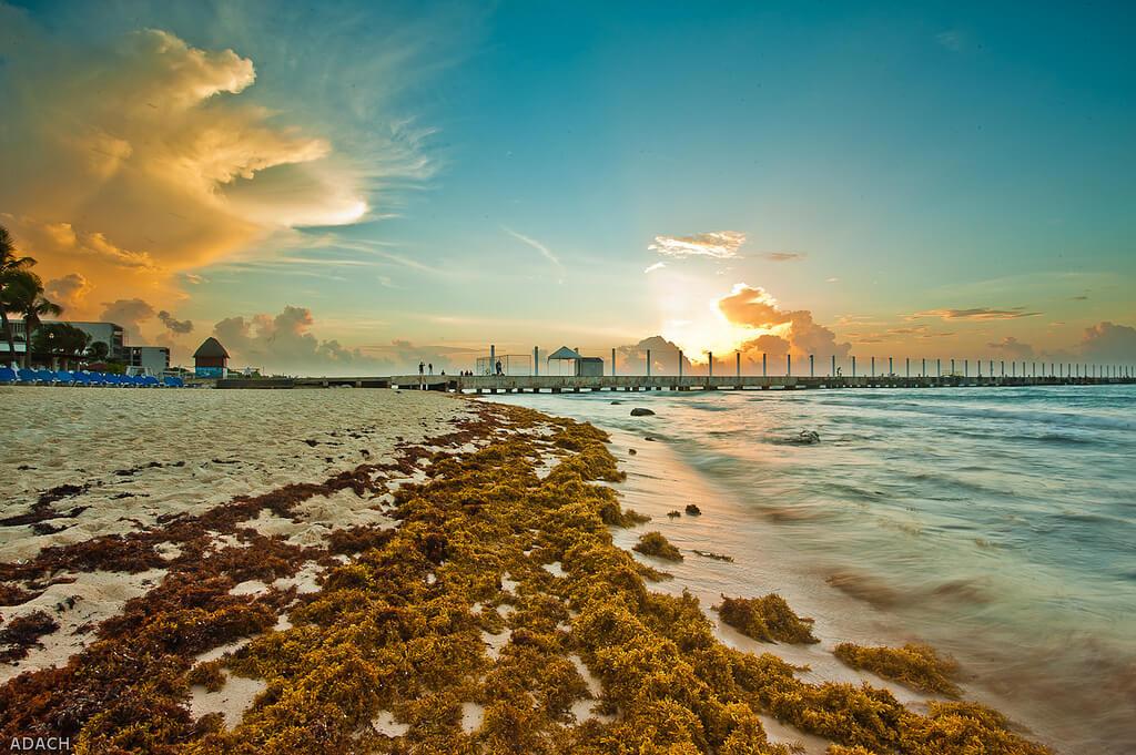 Playa del Carmen (México). Foto: Christopher William Adach