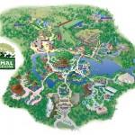 MAPA - Animal Kingdom